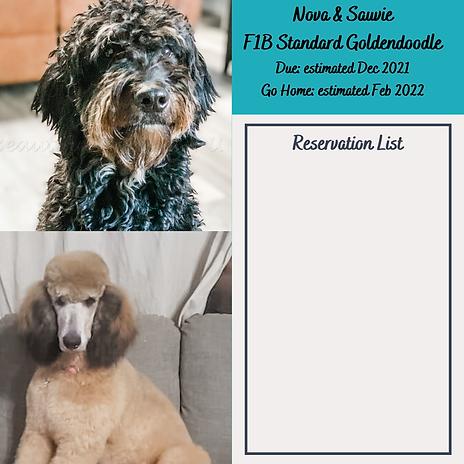 Nova & Sauvie Reservation List Dec 2021.