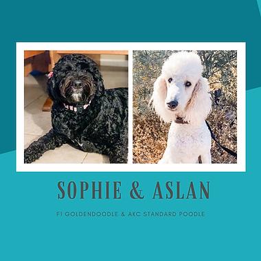Sophie & Aslan.png