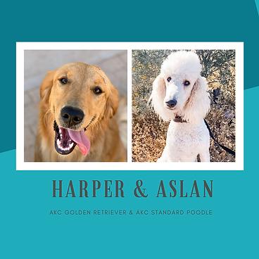HARPER & ASLAN.png