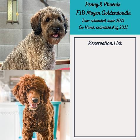 Penny & Phoenix Reservation List June 20