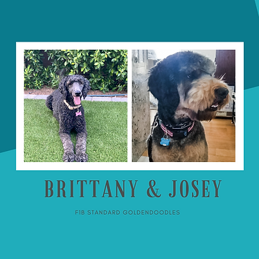 BRITTANY & JOSEY.png