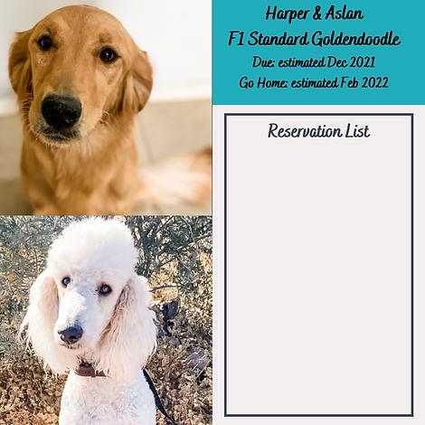 Harper & Aslan Reservation List Dec 2021