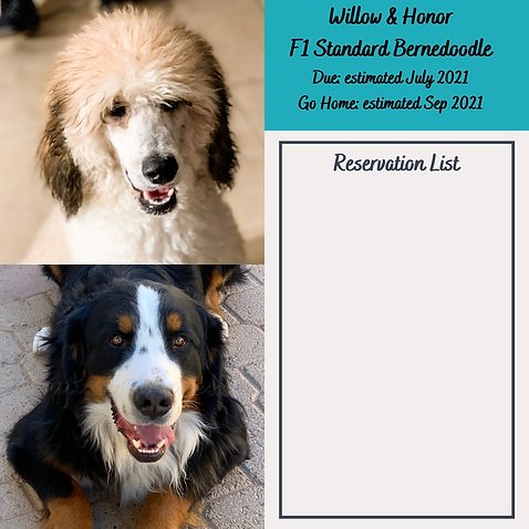 Willow & Honor Reservation List July 202