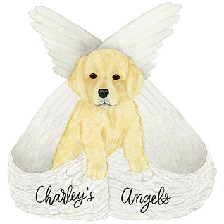 Charley's Angels Logo.jpg