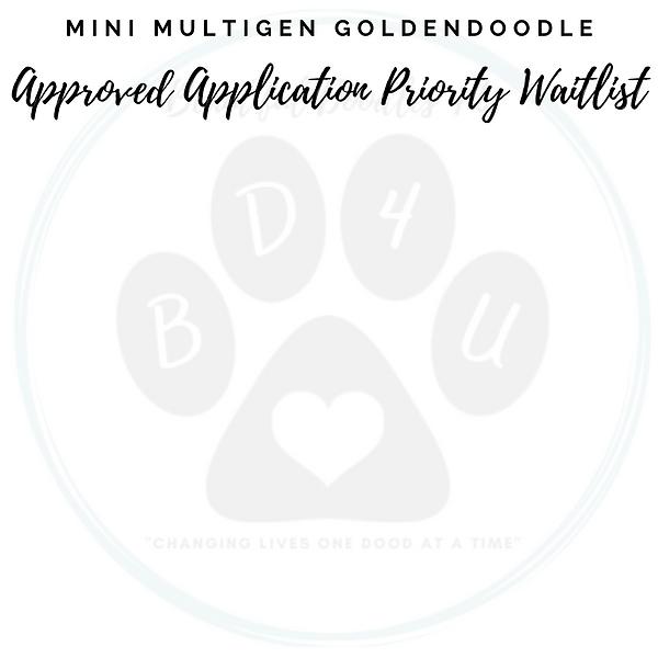 Mini Multigen Goldendoodle Approved Application Waitlist.png
