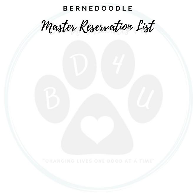 Bernedoodle Master Reservation List (1).