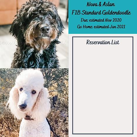 Nova and Aslan Reservation List Nov 2020