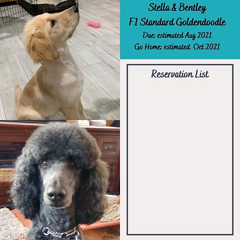 Stella & Bentley Reservation List Aug 20