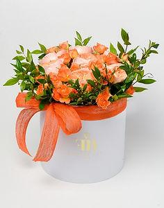 Orange 3a.jpg