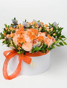 Orange 4a.jpg