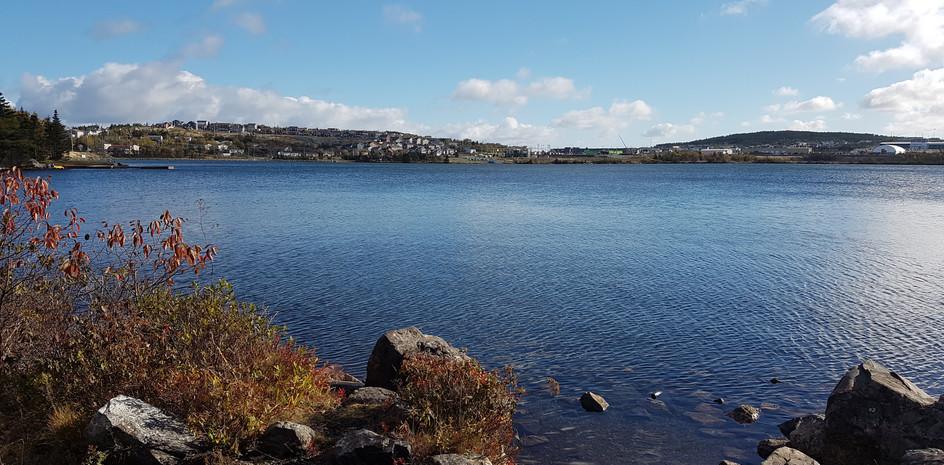 Neil's Pond (15 min walk)