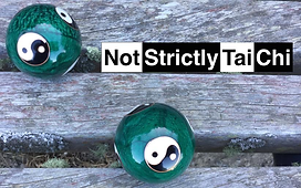 Logo of Not Strictly Tai Chi