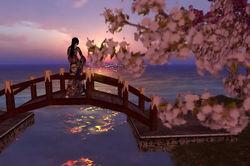 Cherry-Blossom-01-F2.jpg