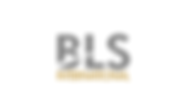 BLS International logo