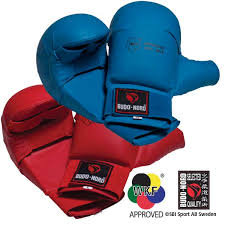 Budo Nord Hand Pads - WKF Approved
