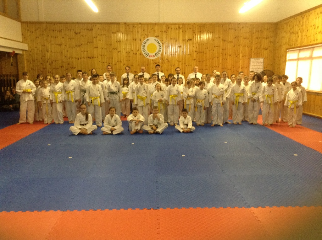 yellow white belt and above