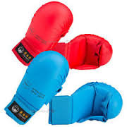 Tokaido Hand Pads - WKF approved