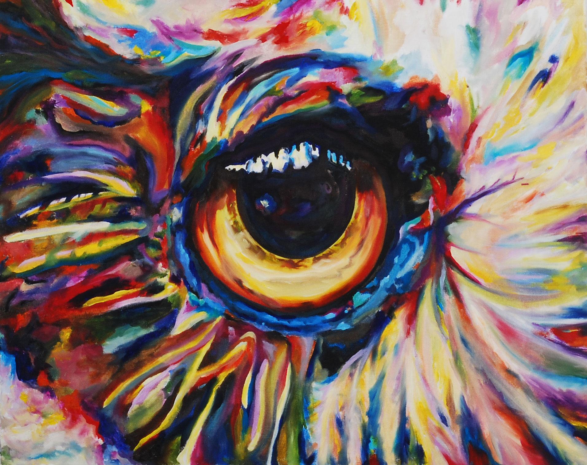 Rainbow Eye II