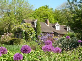 Copse Garden in May