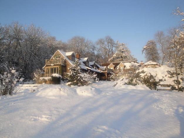 The Copse in snow
