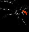 purepng.com-spiderspiderorder-araneaeair