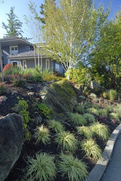 Larabee Cliffside Residence (1)