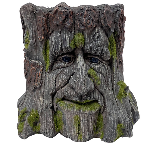 Tree Stump Plant pot with a Face