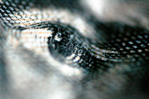 united states currency eye- IMG_7364_web