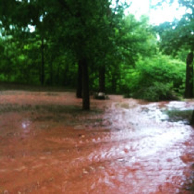 This is my driveway last night.  It is a foot deep in places.