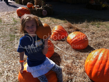 A Day at the Pumpkin Patch With My Boo