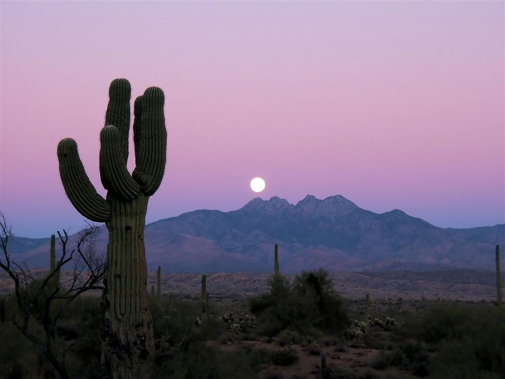 sonoran-desert-moonrise-photo-large.jpg.