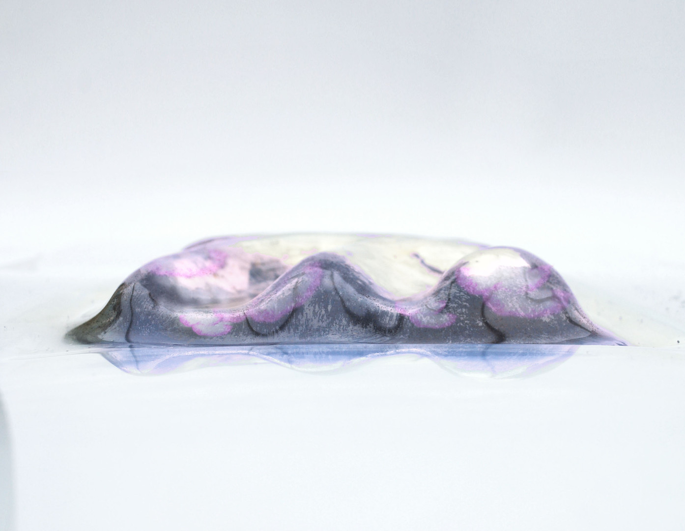 myceliumcolor.jpg