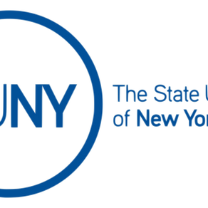 SUNY Professional CPD: Professional Adulting Workshop
