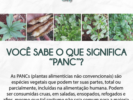 """O que significa o termo """"PANC""""?"""