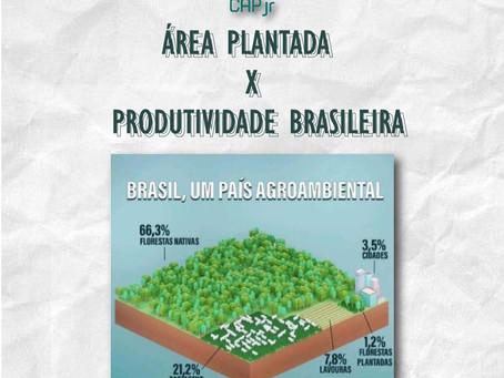 Área plantada x Produtividade brasileira