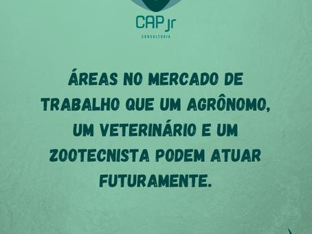 Áreas no mercado de trabalho que um agrônomo, um veterinário e um zootecnista podem atuar.