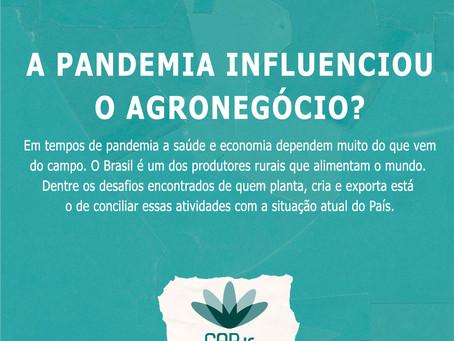 A Pandemia influenciou o Agronegócio?