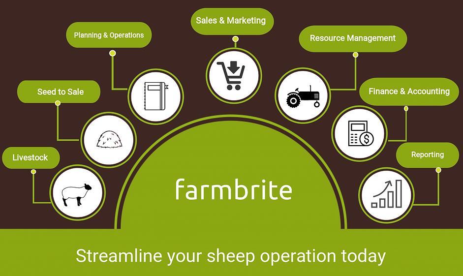 Sheep managment.png