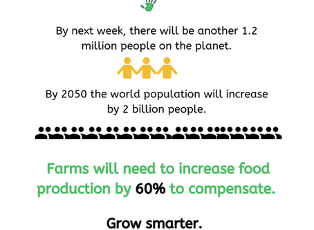 Small farms vs. large farms; Growing smarter together