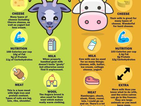 Epic Farm Battle: Goats vs. Cows