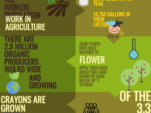 7 interesting facts about agriculture