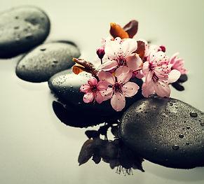 Stenar, blommor