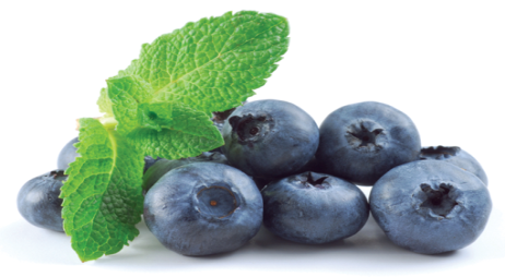 Ready washed Fruit - Blue Berries