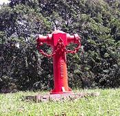 Branding > der rote Hydrant!