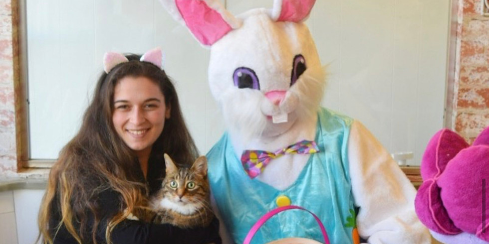 Pictures with the Easter Bunny!