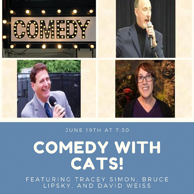 Comedy with Cats