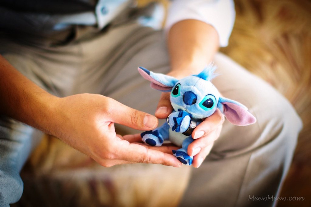 Stitch held the rings