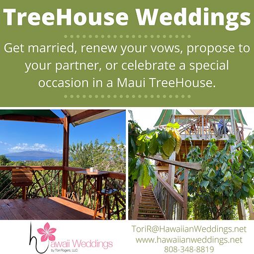 Maui Chocolate Farm Treehouse.png