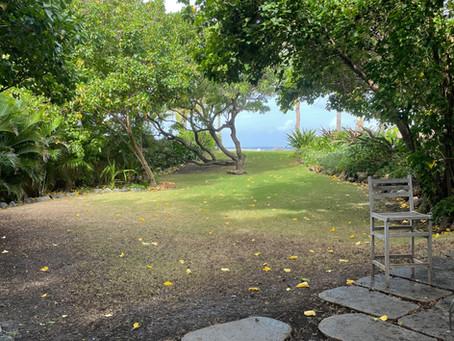 Surf Club Maui- an oceanfront event venue