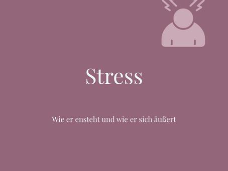 Stress - Was ist das überhaupt und wie äußert sich Stress?